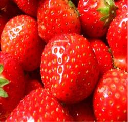 Erdbeeren © Flickr/ VanessaO