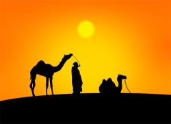 Ein Hauch Wüste: Schokolade aus Kamelmilch © Flickr/ lovelypetal