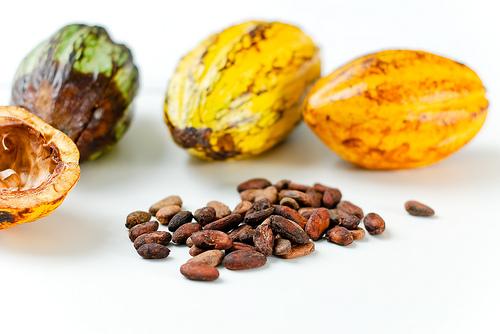 Kakaobohnen aus Sao Tome © Flickr / EverJean