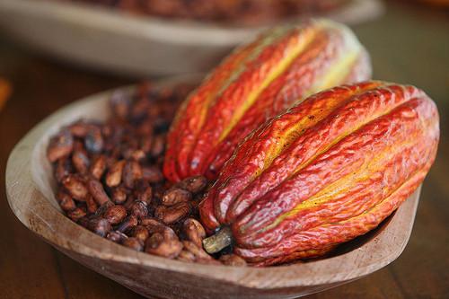 Kakaobohnen, Flickr, BY © Fotos GOVBA